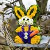 A Húsvét virágaival dobjuk fel az ünnepi asztalt