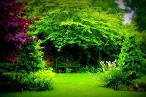 Egy XIX. századi kert kialakítása