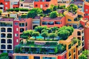Miért és mire jó a zöldtető?