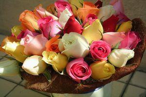 Mi a vágott rózsa hosszú életének titka?