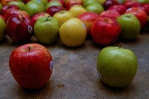 Melyek a leghíresebb almafajták?