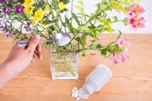 Hogyan segít a fehérítő a virágoknak?
