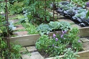 Hogyan legyen jövőre még szebb kertünk? - 2. rész
