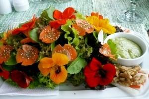 Kóstoljunk vadnövényekből készült ételeket