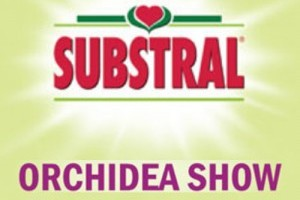 Substral Orchidea Show 2011