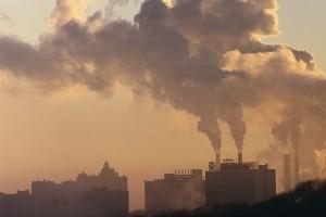 A levegőszennyezés hatása a növényekre