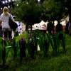 Gardenexpo kiállítás 2011 (mozgó)képekben!