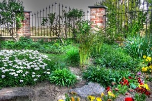 Az egészséges kert titka