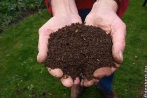 A komposztálás folyamata - sosem késő belekezdeni!