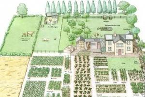 Tervezzük meg jövőbeli kertünket!