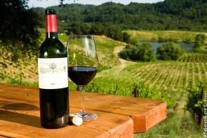 Quadris díjjal tüntették ki a legjobb hazai borokat