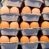 Hogyan kell értelmezni a tojások jelölését?