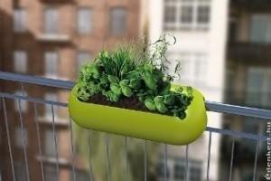 Tavaszi trendek balkonkertészeknek