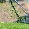 Hasznos vagy káros, ha a gyepmulcsot a fűben hagyjuk?
