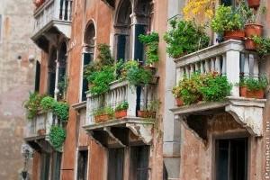 Barátságos edénykertek a balkonon