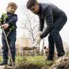 10 tipp az őszi gyümölcsfa ültetéshez