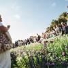 Virágpompa a Margitszigeten az egynyári növénybemutatón