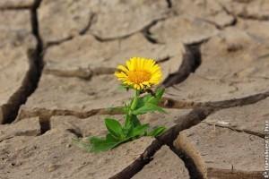 2018 volt a legmelegebb év Magyarországon
