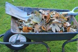 Mi legyen a kerti hulladékkal? Egy ágdaráló vagy komposztaprító sokat segíthet!