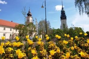 Június 1-ig lehet jelentkezni a Virágos Magyarország versenyre