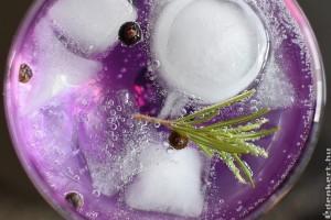 A  gin krónikája