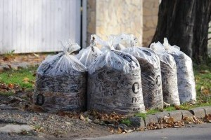 Kerti zöldhulladék: tudnivalók az elszállításról