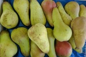 Zöldség-gyümölcs piaci árak 2020 január