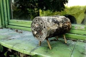 Tél végén ideje kihelyezni a méhecskehoteleket