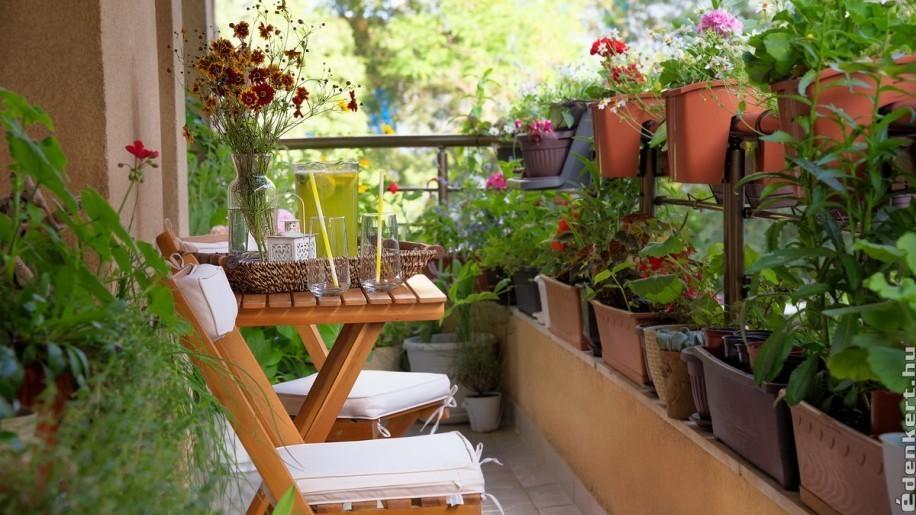 Karantén kertészkedés az erkélyen: mit ültessünk?