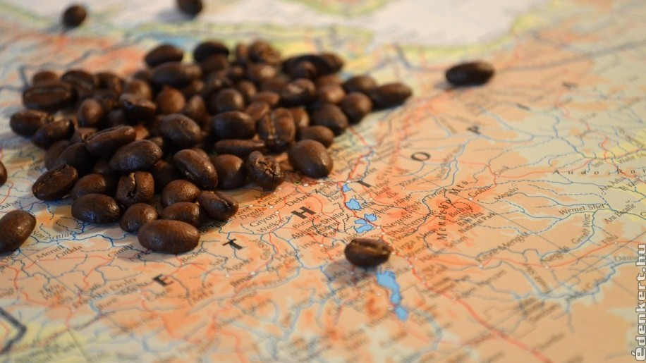 A kávézás története: a kávébogyót legelésző kecskéktől az espressóig